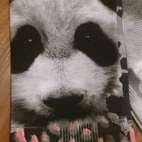 legging urso panda tam 8 - 8 anos - Brandili