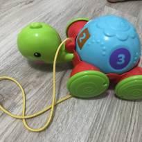 Brinquedo Tartaruga Fisher Price - Sem faixa etaria - Fisher Price