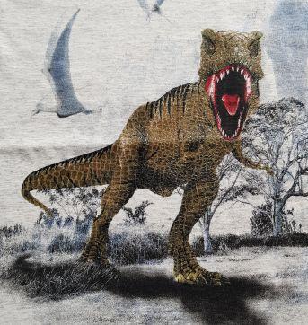 Camiseta Dinossauro (item 652) - 8 anos - Rolú