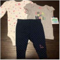 Trio Carter`s 3-6 meses novo - 3 a 6 meses - Carter`s e Child of Mine