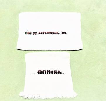 4237 - Jogo de toalhinhas brancas bordadas personalizadas - DANIEL - trenzinho - Sem faixa etaria - Toalhas São Carlos