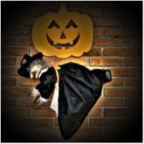 4851 - Bruxa do Halloween – Importada – 55 cm. (com luz e som) -  - Importada