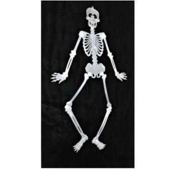4894 - Halloween Importado – Esqueleto para pendurar - 0,90 cm. - Sem faixa etaria - Importado