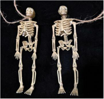 4907 - Halloween Importado – Esqueletos pendurados - Sem faixa etaria - Importado