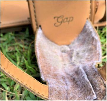 5057 - Sandália gladiador Gap – USA 1 – BR 31 - 20 cm. - 31 - GAP