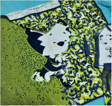 Kit conjunto toalha, bermuda e camiseta piscina Tigor Baby lindos e novíssimos! - 6 a 9 meses - Tigor T.  Tigre