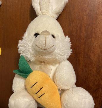 Coelho com cenoura perfeito pra Pascoa - Sem faixa etaria - Não informada