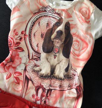 Conjunto cachorrinho - 6 anos - Nick
