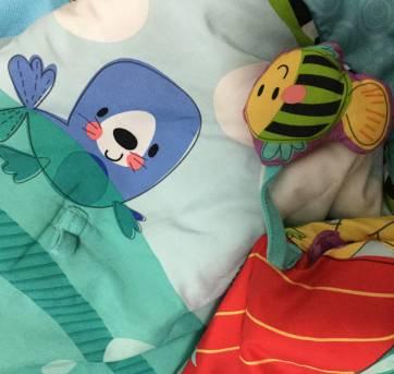 Tapete de atividades para bebês Fisher Price - Sem faixa etaria - Fisher Price