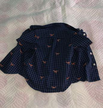 Camiseta dinossauros - 12 a 18 meses - Baby Gap