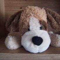 Cachorrinho Felpudinho - Sem faixa etaria - Não informada