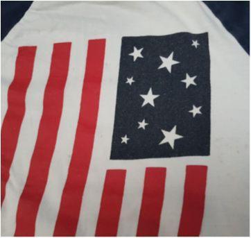 Camiseta Bandeira Americana - 5 anos - US Polo Assn