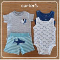 Kit Body regata 2 unidades + Camiseta + Shorts Tubarao 6 meses - 00032 - 6 meses - Carter`s
