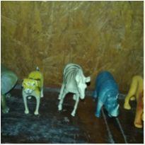 kit de Animais -  - Não informada