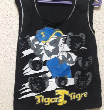 Regata - 4 anos - Tigor T.  Tigre