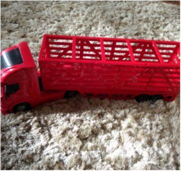 Caminhão grande - Sem faixa etaria - Não informada