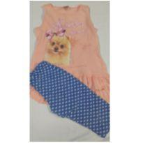 Conjunto blusinha e bermuda- tamanho 6 - corre lá na lojinha tem promoção - 6 anos - Fakini Kids