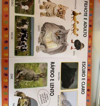 Livro animais bebê - Sem faixa etaria - Editora DCL