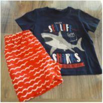conjunto camiseta/bermuda microfibra - 2 anos - Malwee