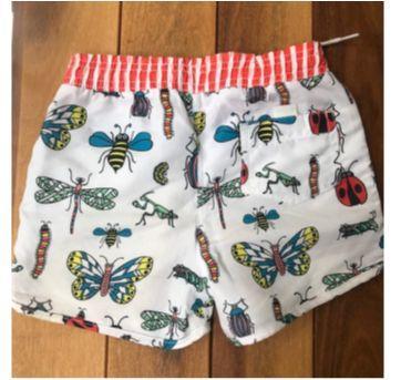 Short inseto - 6 anos - BB Básico