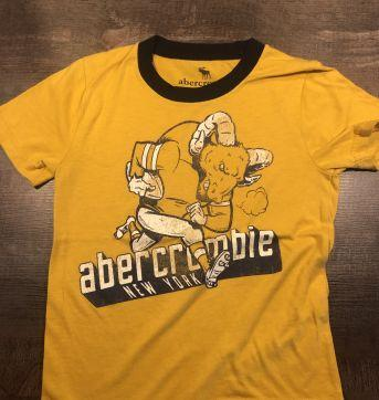 05 T-Shirts Abercrombie & Fitch - 4 anos - Abercrombie