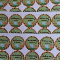 Kit de 65 Tags em papel fotográfico tema Sáfari Guilherme 3 aninhos - Sem faixa etaria - Não informada