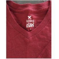 Camiseta manga longa - 4 anos - Hering Kids