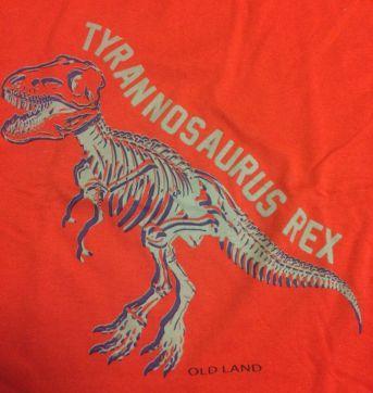 Conjunto tiranossauro - 8 anos - Marca não registrada